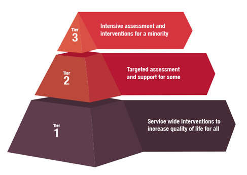 Tiered PBS for Supported living